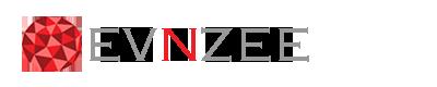 Evnzee Technologies: 3D Printing Logo